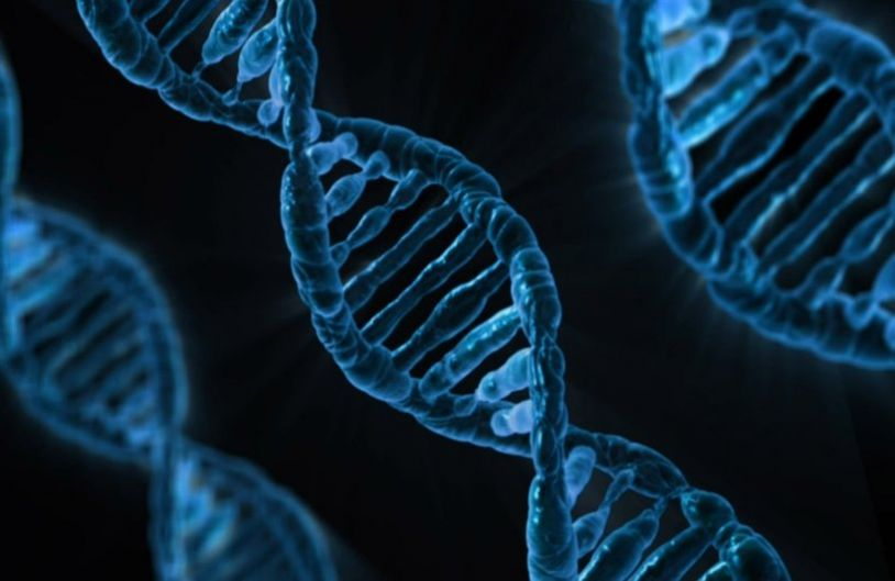 The MST Reader: CRISPR and the Stuff of Life